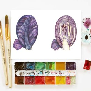 Botanical Art Classes